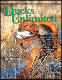 Ducks Unlimited Magazine Calls Horicon Marsh   'Favorite' In May/June Feature