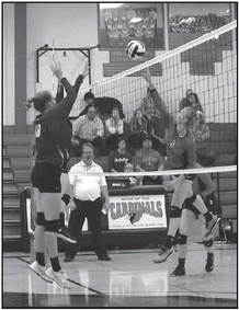 Lady Cards Take Lady Lions  In Straight Sets