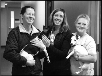 Dogs By The Dozens, Humane Society Excels At  Finding Homes For Four-Legged Friends