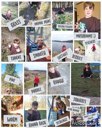 Spring Nature Scavenger Hunt Successfully Completed By Mayville Youngster