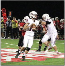 My, Oh My, Mayville! Cards  Spoil Lions' Homecoming